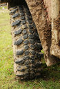 Free All Terrain Tire Stock Photos - 19243953