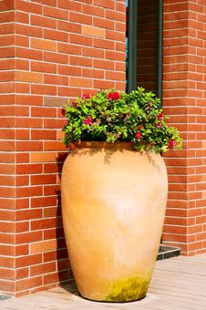Ceramics Flowerpots Stock Images