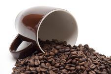 Free Coffee Beans Stock Photo - 19240840