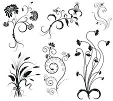 Free Vector Floral Decoration On White. Royalty Free Stock Photography - 19242177