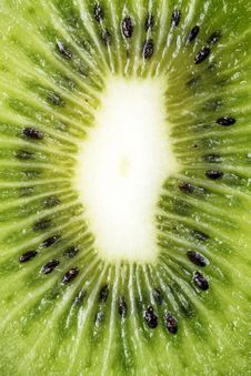Free Kiwi Stock Photos - 19242523