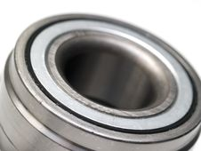 Free Bearing Stock Photography - 19243262
