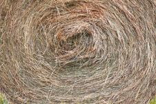 Free Dry Round Bale Grass Royalty Free Stock Photos - 19244588