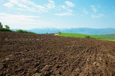 Free The Plowed Field Royalty Free Stock Photos - 19248658