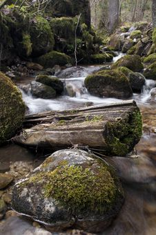 Creek With Mossy Rocks Stock Photos