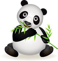 Cute Panda Eating Bamboo Royalty Free Stock Photography