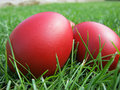 Free Easter Eggs In Grass Royalty Free Stock Image - 19255986