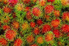 Free Fresh Rambutans In Market Stock Photography - 19250922