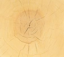 Slice Of Wood Timber Background Stock Photography