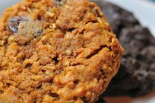 Free Closeup Of Fresh Cookies Royalty Free Stock Photos - 19251458