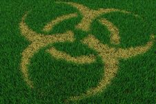 Free Biohazard Symbol From Thatch On Green Grass Royalty Free Stock Image - 19251926