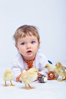 Free Boy Meets Chick Royalty Free Stock Photo - 19252535