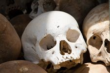 White Skull From A Grave Of Khmer Rouge Victims Royalty Free Stock Images