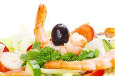 Free Salad Stock Photo - 19254360