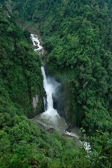 Free Waterfall Jungle Royalty Free Stock Photo - 19254665