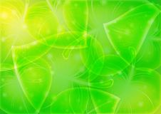 Free Abstraction-leaf-background  10 Eps Stock Photos - 19255843