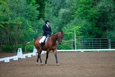 Free Young Equestrian At A Dressage Show Stock Photo - 19257840