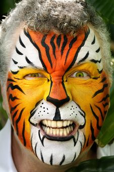 Free Angry Tiger Royalty Free Stock Photos - 19258208