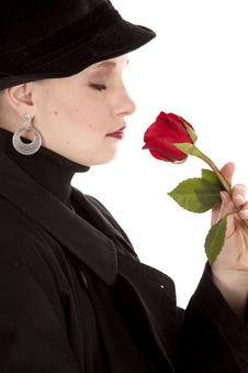 Free Sideview Rose Stock Photos - 19259343