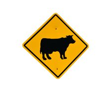 Free Cow Signboard Royalty Free Stock Photo - 19261955