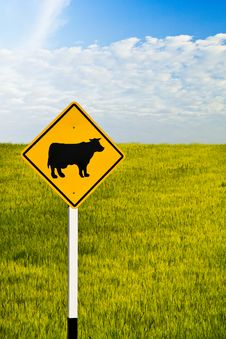 Free Cow Signboard Royalty Free Stock Images - 19261999