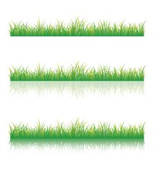 Free Green Grass Royalty Free Stock Photo - 19262095