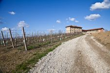 Italian Villa With Vineyard: Spring Season Royalty Free Stock Photos