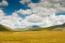 Free Yellow Meadow Stock Photos - 19264523