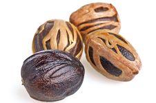Free Nutmeg Stock Photography - 19264822