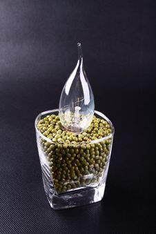 Free Mung Bean  And Light Bulb Royalty Free Stock Image - 19266986