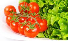 Free Salad Ingredients Royalty Free Stock Photo - 19267805