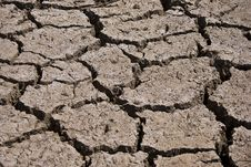 Free Dry Cracked Riverbed Royalty Free Stock Photography - 19268377