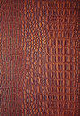 Free Leather Backgrounds Stock Photos - 19273793