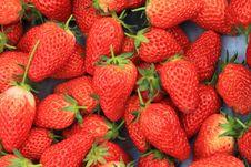 Free Strawberry Royalty Free Stock Photos - 19274508