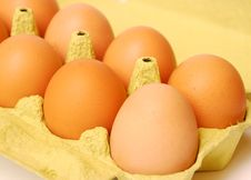 Free Eggs Royalty Free Stock Image - 19275386