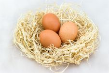 Free Three Fresh Eggs Lying Royalty Free Stock Image - 19275946