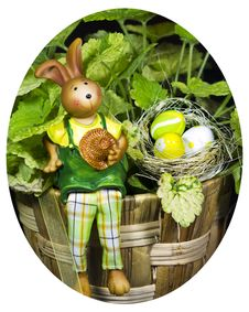 Free Bunny With Easter Eggs With A Plant In Backgroun Royalty Free Stock Photography - 19279867