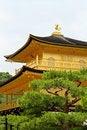 Free Kinkakuji Temple Royalty Free Stock Photo - 19282865