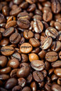 Free Coffee Beans, Water Drops Stock Image - 19287071