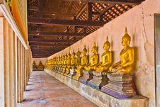 Free Row Of Buddha Image. Stock Photo - 19282040