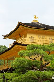 Free Kinkakuji Temple Royalty Free Stock Photo - 19282865
