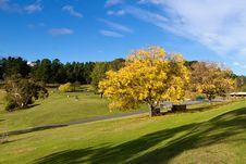 Park, Tasmania Stock Images