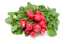 Free Radishes Royalty Free Stock Images - 19286299