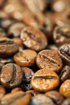 Coffee Beans, Water Drops
