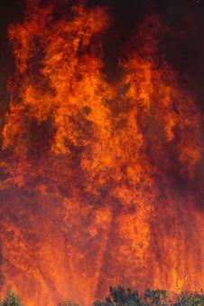 Free Bush Fire Stock Photos - 19288183