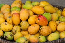 Free Mangos In Basket Royalty Free Stock Image - 19288226
