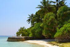 Free Island With Palms Stock Photos - 19291123