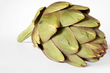 Free Green Artichoke Stock Images - 19291284