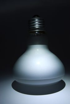 Free Matte White Bulb Royalty Free Stock Images - 19291949