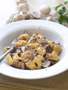 Free Tortellini Royalty Free Stock Photography - 19294297